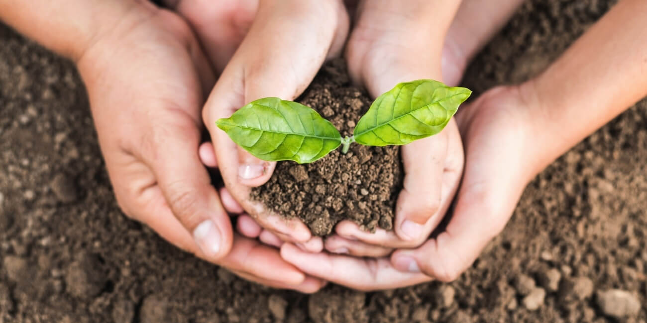 Kundenvertrauen gewinnen Pflanze